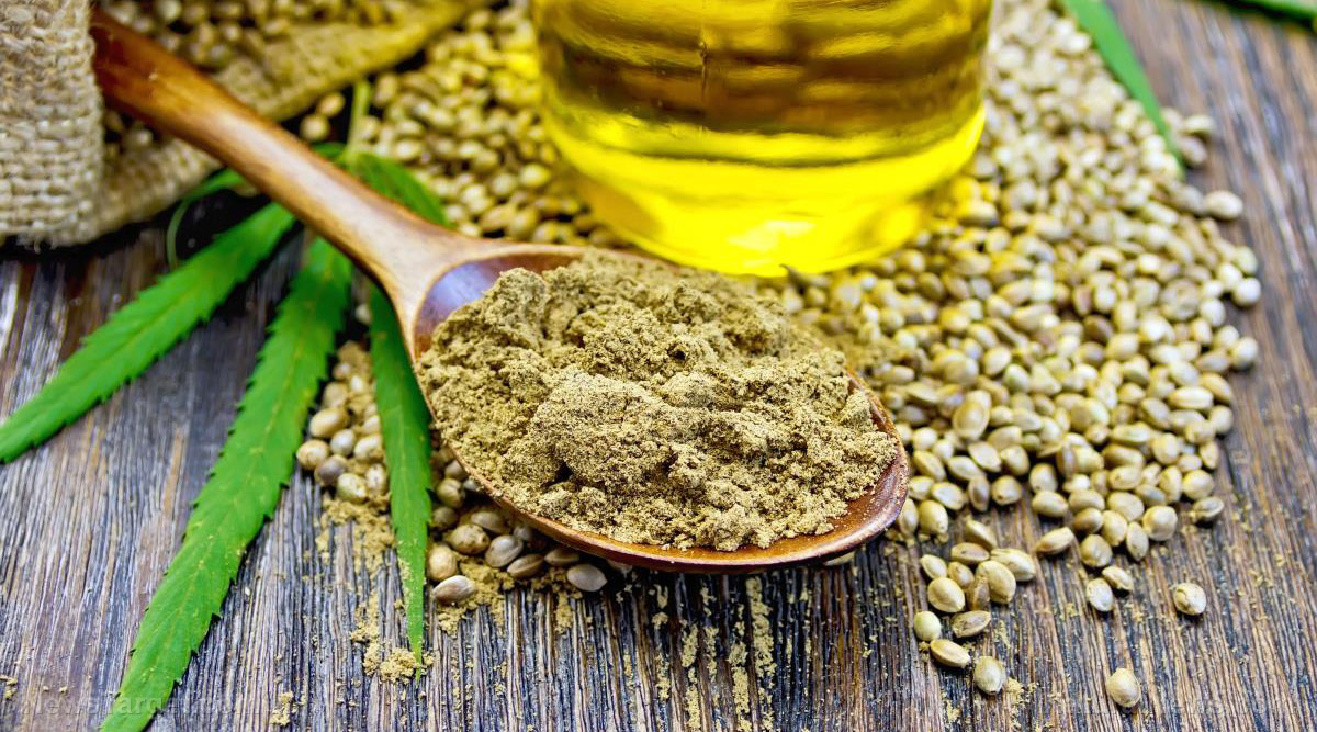 The evidence is clear: Hemp slows the progression of ovarian